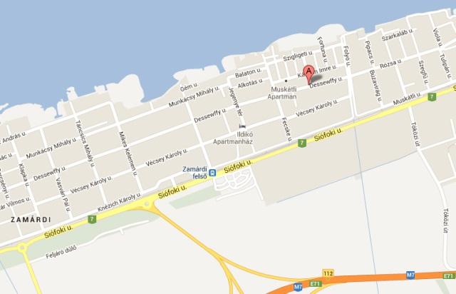 google.maps.hk.2013.pg